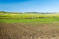 Fields in the Spanish province of Cadiz Stock Images