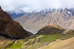 Fields in Spiti Valley in Himalayas Stock Images