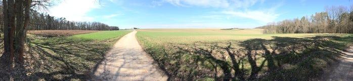 Fields in springtime. Landscape, path, fields Stock Images