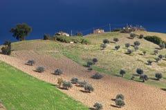 fields stormigt soligt för skies Royaltyfria Foton