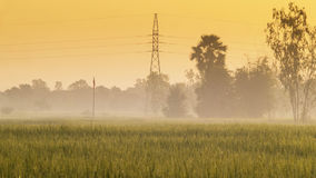 Fields and Sunrise Stock Photography