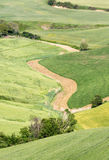 Fields of Tuscany Stock Photos