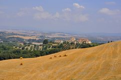 Fields with nature and houses in Tuscany, Italy  Royalty Free Stock Images