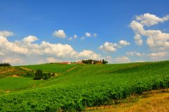 Iconic landscape with vineyards in Tuscany, Italy Stock Photos