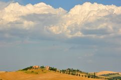 Fields in Tuscany, Italy Royalty Free Stock Photo