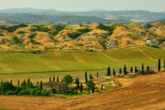 Fields in Tuscany, Italy Royalty Free Stock Photos