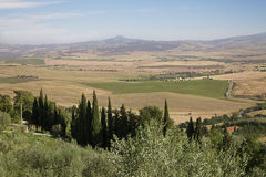 Fields in Tuscany Stock Photography