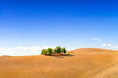 Fields in Tuscany Royalty Free Stock Photography