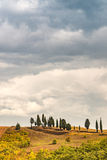 Fields in Tuscany. A red Fields in Tuscany stock photography