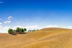 Fields in Tuscany. A red Fields in Tuscany stock images