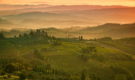 Fields in Tuscany Stock Photo
