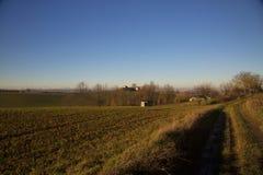 Fields under blue sky Stock Image