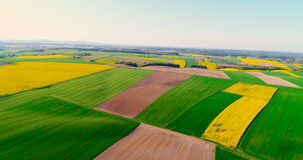 Fields with various types of agriculture 4K. Aerial view of fields with various types of agriculture 4K stock video footage