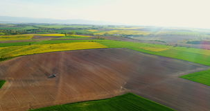 Fields with various types of agriculture 4K stock video