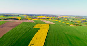 Fields with various types of agriculture 4K stock footage