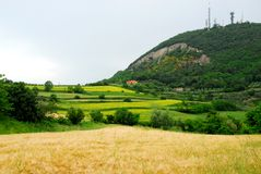 Fields by very beautiful colors on hills Hills in the province of Padua in Veneto (Italy) Royalty Free Stock Photography