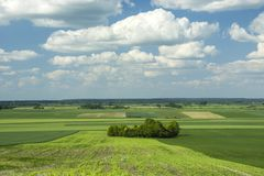 Fields view, copse and clouds in the sky. Fields view, small copse and white clouds in the blue sky stock photos