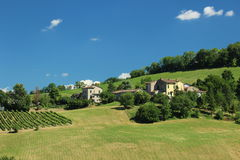 Fields and vineyard in north italy. Farmers hilly rural area north italy stock photos