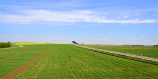 Fields and vineyard with road and wind turbines. At the horizon, vine-quarter, Austria stock photo