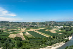 Fields and vineyards in Barbaresco, Alba, Italy Royalty Free Stock Photography
