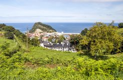 Fields of vineyards in Zumaia. San Sebastian, Spain on a sunny day stock photos