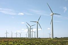 fields windturbines Португалии Стоковые Изображения RF
