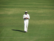 Cricket Fielder Stock Photography