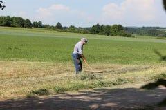 fienagione dell'agricoltore Fotografie Stock Libere da Diritti