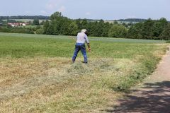 fienagione dell'agricoltore Fotografie Stock