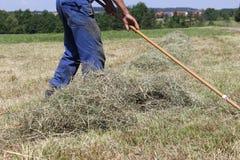 fienagione dell'agricoltore Fotografia Stock Libera da Diritti