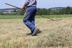 fienagione dell'agricoltore Immagini Stock Libere da Diritti