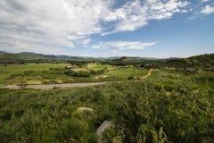 Fieno dell'erba di Colorado Fotografia Stock
