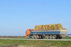 Fieno di trasporto del camion nel suo corpo Fabbricazione del fieno per l'inverno Fotografie Stock Libere da Diritti