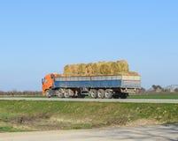Fieno di trasporto del camion nel suo corpo Fabbricazione del fieno per l'inverno Fotografia Stock Libera da Diritti