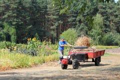 Fieno di trasporto dell'agricoltore Fotografia Stock