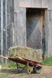 Fieno per i cavalli fotografie stock libere da diritti