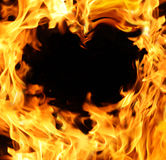 Fier heart Stock Images