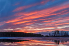 Fier in sky. Karelia, Elm lake, spring Royalty Free Stock Image