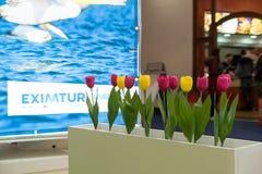 Fiera del turismo rumena 2017 Immagine Stock Libera da Diritti