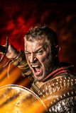 Fierce battle Stock Images
