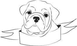 Fierce Bulldog Royalty Free Stock Photography