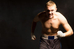 Fierce determined young boxer Royalty Free Stock Photography