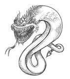 A fierce dragon. Pencil drawing of a fierce dragon Royalty Free Stock Images