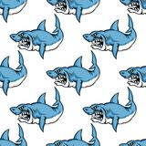 Fierce predatory swimming shark Stock Images