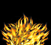 Fierce Raging Fire Flames.  vector illustration