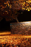 Fiery autumn. Bright autumn leaves and the old brick wall Stock Image