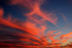 Fiery Clouds. Fire like cloud form againt cool blue sky Royalty Free Stock Photography