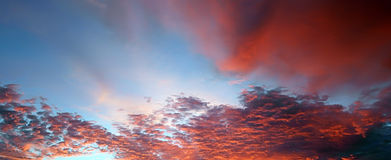 Fiery clouds in the blue sky during a sunset Royalty Free Stock Image