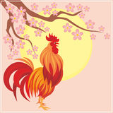 Fiery cock background. Fiery rooster - a symbol of the Chinese new year. Vector background Royalty Free Stock Photo