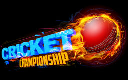 Fiery cricket ball. Illustration of fiery cricket ball for Cricket Championship Royalty Free Stock Image